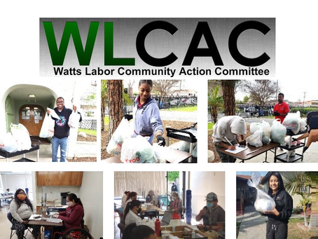 Employment Opportunities With WLCAC