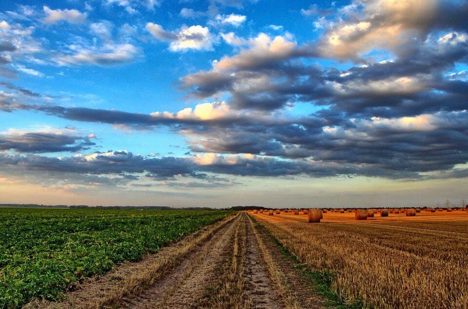 Nitrogen fertilizers, providence turned poison - farm landscape with clouds