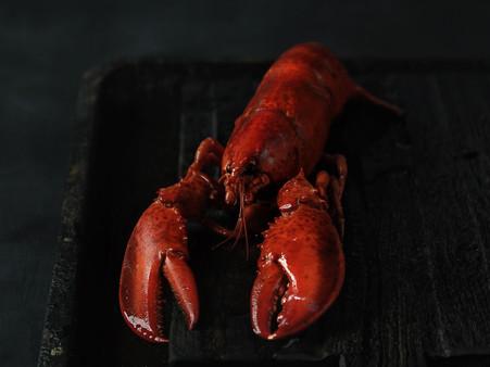 Lobster sauce