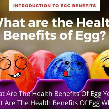 What are the Health Benefits of Egg? Introduction to Egg Benefits