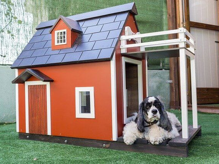 A Shelter for your Favorite Pet