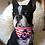 Thumbnail: Collier bandana pour chien - modèle Moussaillon