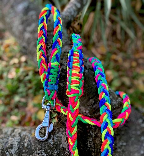 Laisse pour chien tressée - modèle Rainbow