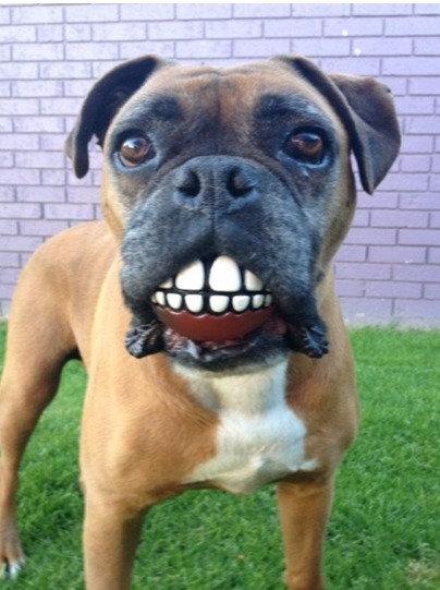 Balles sourire Grinz - 3 tailles à partir de