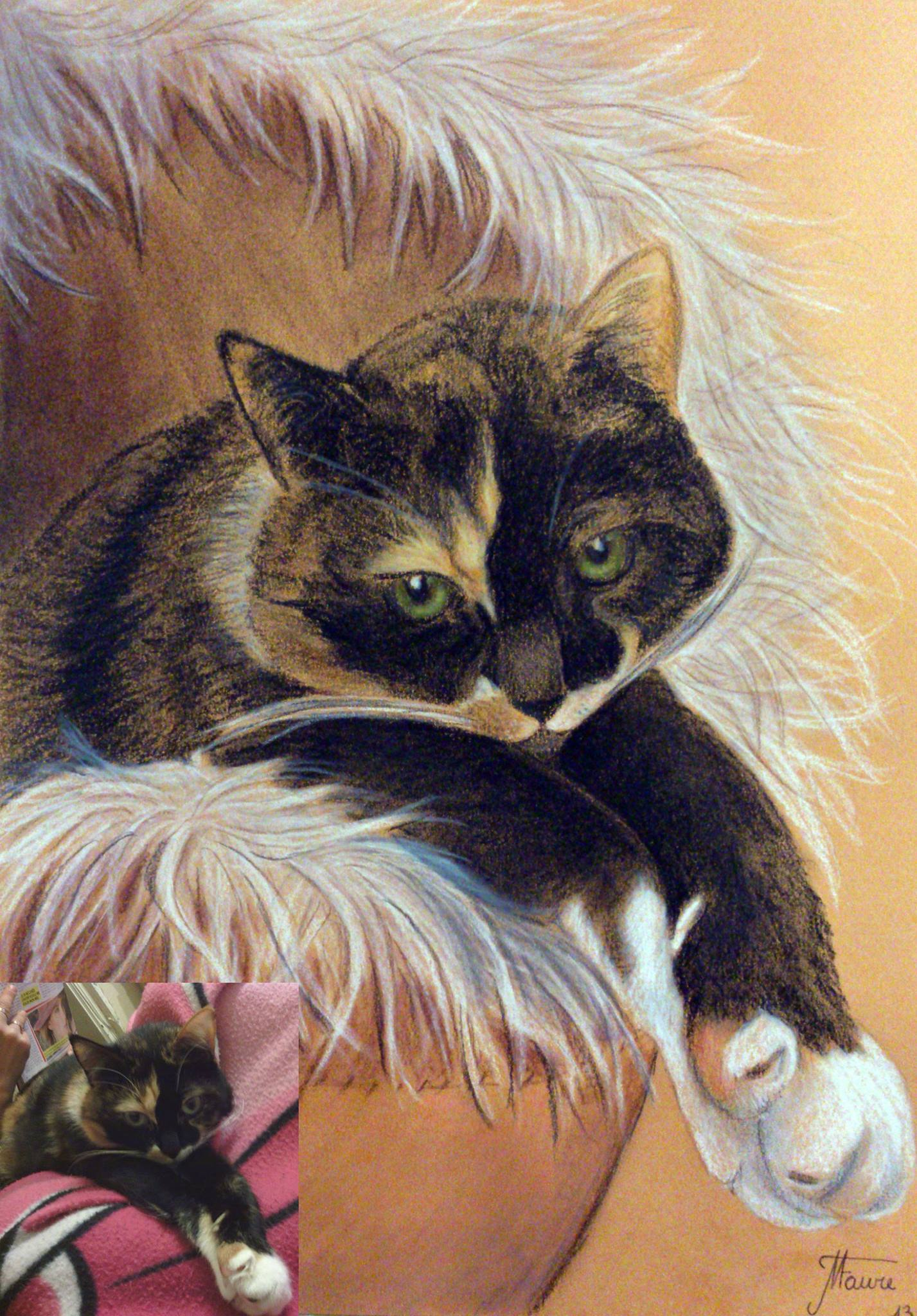 Portrait chat pastels