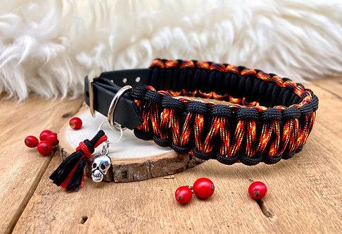 Collier pour chien - modèle Etna