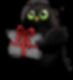 chouette avec  cadeau.png