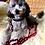 Thumbnail: Laisse pour chien tressée - modèle Batgirl