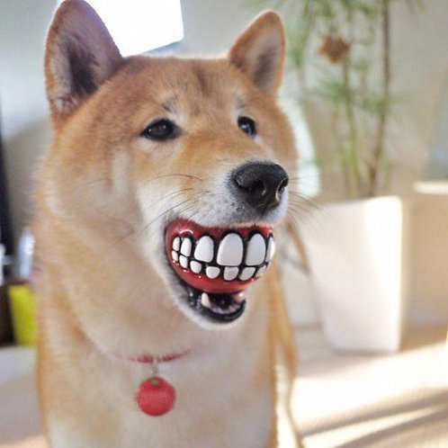 Jouet balle sourire