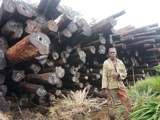 Pillaging people's Tubi trees