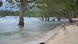 Vanuatu's religious call for climate justice