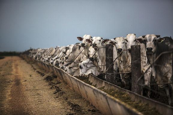 Methane emissions threaten climate change goals