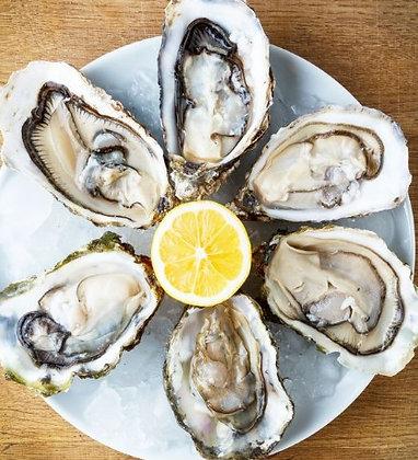 O - Half Dozen Fresh Oyster (XL)