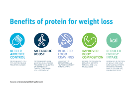 Increase Percentage of Protein Intake to Improve Body Composition