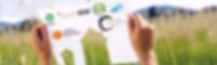 Building Compliance & Certification