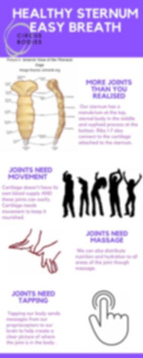 Copy of Healthy sternum easy breath.jpg