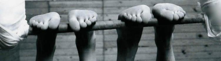 Our Wonderful Feet: 3 Videos