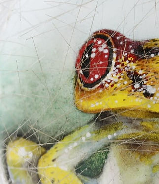 Frog, inside painted snuff bottle by Li Yingtao.