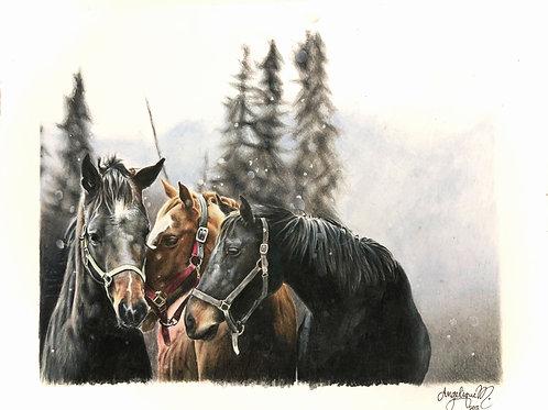 Three Horses | CARDS
