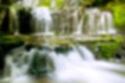 AdobeStock_94903169.jpeg