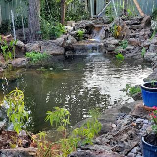 Loi Pond
