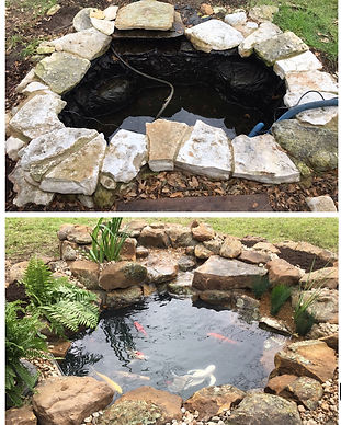 Pond Construction, Koi Pond, Koi Pond Rebuild, Koi Pond Before and After, Pond Replacement, Taylor Texas, Focal Point Features, Wellness Through Water, Pond Improvements, Pond Repair, Koi Pond Filtration