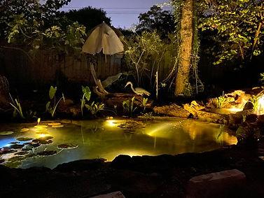 Pond Lighting, Underwater Lighting, LED Lighting, Landscape Lighting, Water Gardening, Koi Pond, Goldfish Pond, Lily Pads, Focal Point, Austin Texas