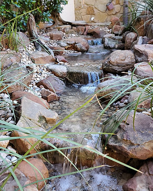 pondless water feature, pondless, pondless waterfall, stream, backyard waterfall, backyard stream, waterfall and stream, lakeway texas, focal point features, wellness through water, pond plants, aquatic plants, sandstone moss boulder, water feature services