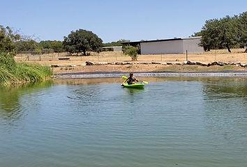 Lake Management, Lake Maintenance, Kayak, Focal Point Features, Georgetown Texas