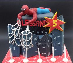 spiderman cake2watermark