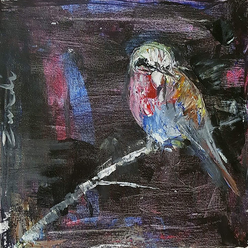 """Blue bird at night"""