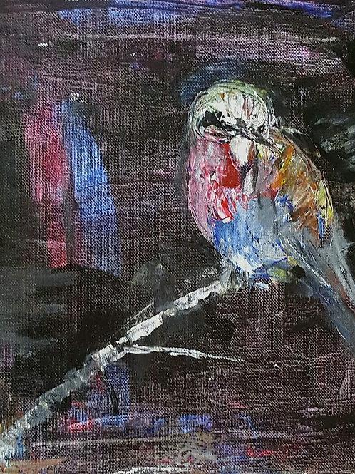 """Blue bird at night"""