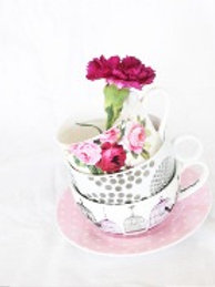 Cups and Saucers card Collection