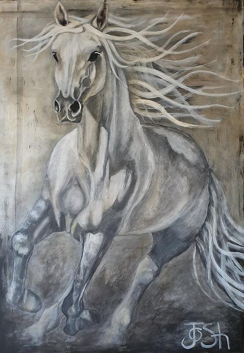 """Horse 3"""
