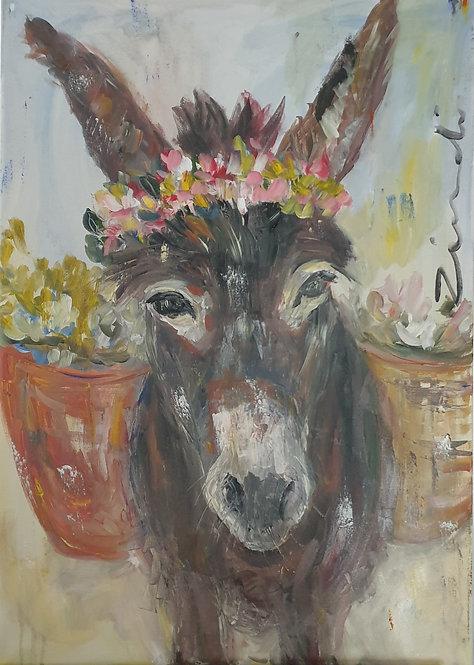 Donkey 1