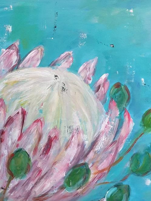 """Turquoise protea 1"""