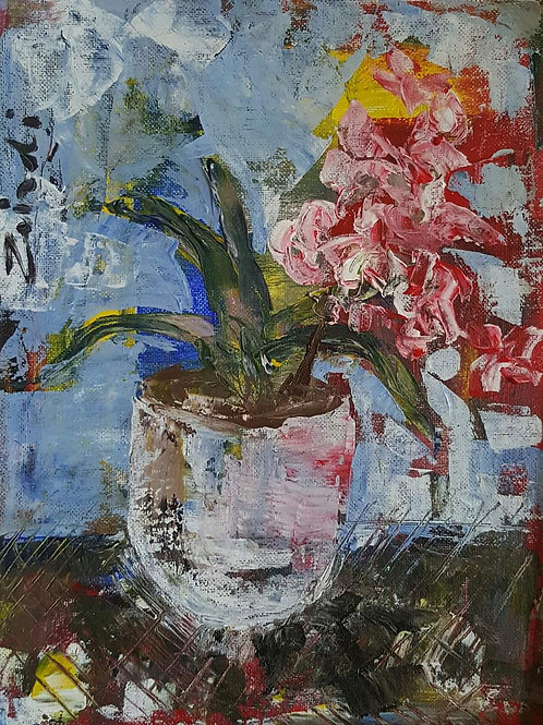"""Ouma's orchid"""