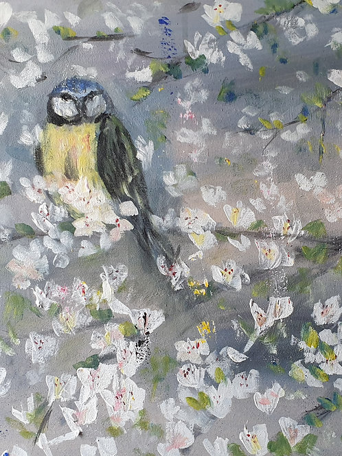 """""""Bird in blossoms"""""""
