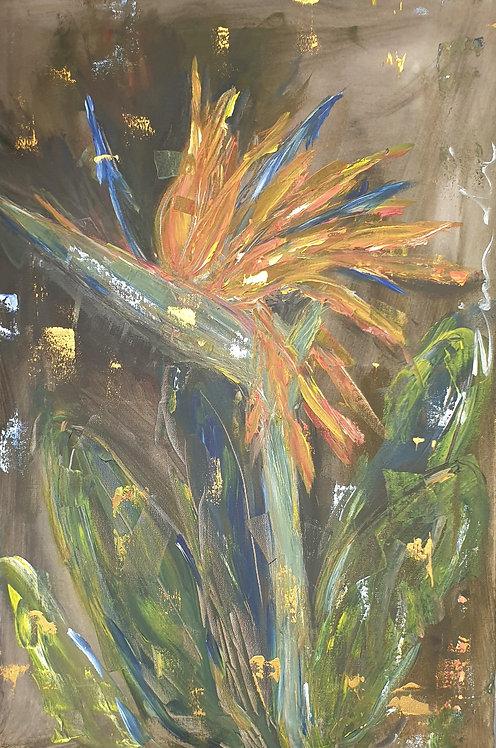 """Strelitzia on dark"" 40 x 60cm"