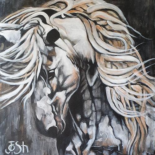 """ Horse 2"""