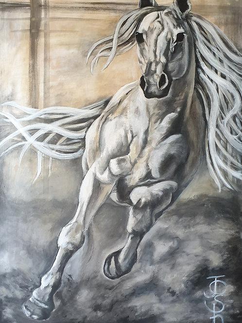 """Horse 4"""