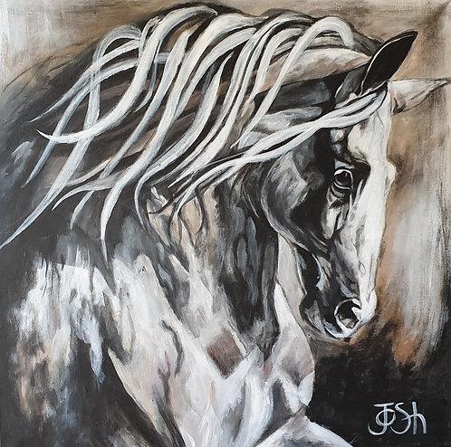 """Horse 1 """