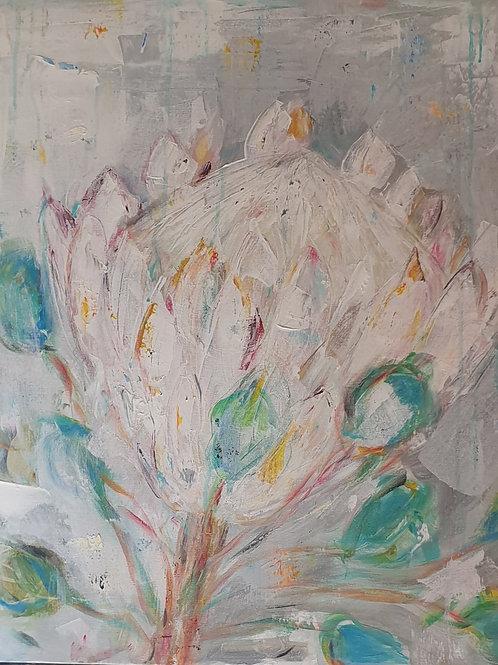 """""""White Protea"""" 60 x 60cm"""