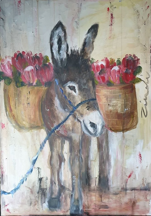 Donkey and proteas
