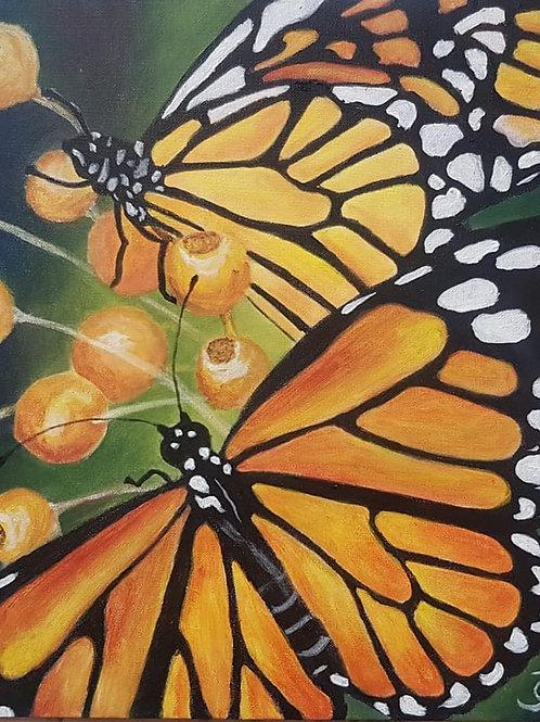 Orange butterfly 1