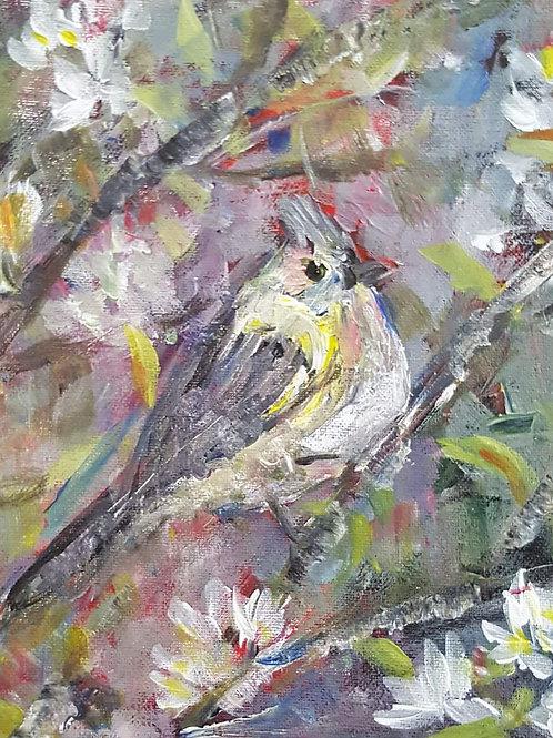 """""""Bird 1"""""""