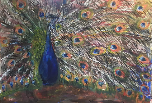 """ Peacock"""