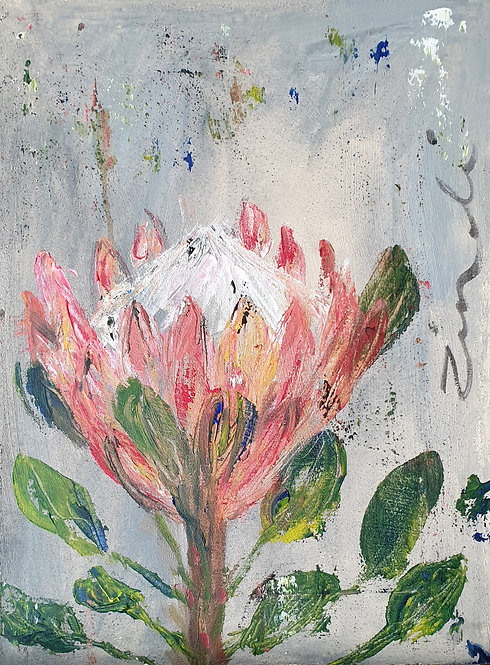 """Protea on grey 2"""
