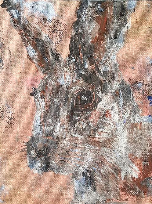 """""""Rabbit on peach"""""""