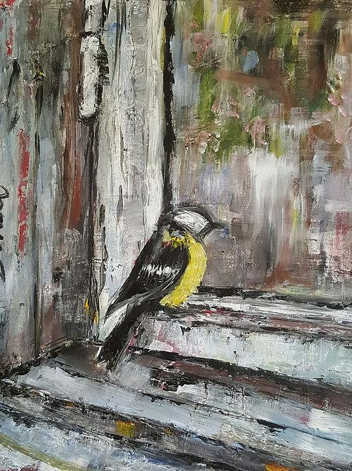 """""""Bird on window sill"""""""